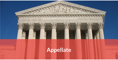 appellate