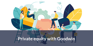 Private equity goodwin
